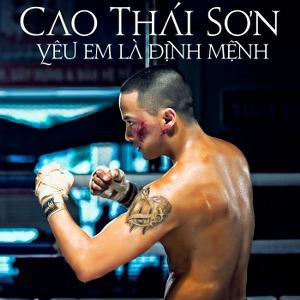 Cao Thái Sơn – Yêu Em Là Định Mệnh – iTunes AAC M4A – Single