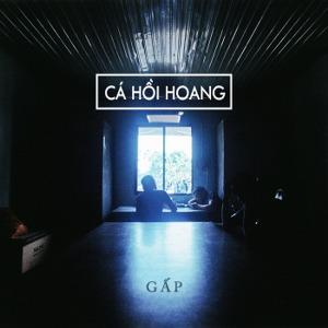 Cá Hồi Hoang – Gấp – 2017 – iTunes AAC M4A – Album
