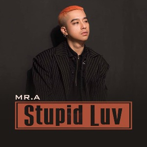 Mr.A – Stupid Luv – iTunes AAC M4A – Single