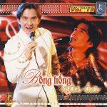Đan Trường – Bông Hồng Cài Áo – 2004 – iTunes AAC M4A – Album