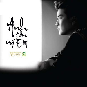 Đàm Vĩnh Hưng – Anh Còn Nợ Em – 2011 – iTunes AAC M4A – Album