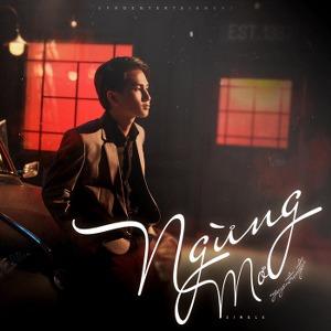Nguyễn Trọng Tài – Ngừng Mơ – iTunes AAC M4A – Single