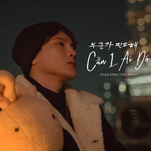 Phạm Đình Thái Ngân – Cần 1 Ai Đó – iTunes AAC M4A – Single