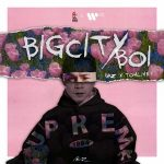 Binz x Touliver – BIGCITYBOI – iTunes AAC M4A – Single