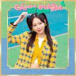 Phí Phương Anh – Cánh Bướm Dối Gian – iTunes AAC M4A – Single