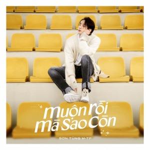 Sơn Tùng M-TP – Muộn Rồi Mà Sao Còn – iTunes AAC M4A – Single